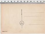 Первая мировая. Агитационная открытка.(3), фото №3