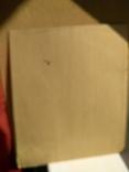 Образец росписи для кухонных досок медовая акварель. 1, фото №9