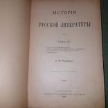 Фундаментальная работа, итог многолетнего изучения русской литературы автором, фото №8