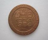Настольная медаль 50 лет Новокраматорский машиностроительный завод 1934-1984 г., фото №4
