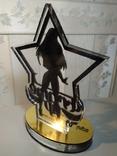 Сувенир с соревнований по спортивному стриптизу среди профессионалов, фото №5