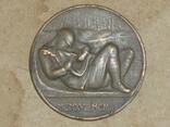 """Польша.Настольная медаль """" POLEGŁYM CZEŚĆ 1918-1920"""", фото №3"""