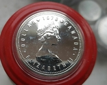 Канада 1 доллар 1978 г. Серебро. XI Игры Содружества. Королева Елизавета II., фото №3