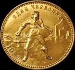 Червонець 1981 року, СРСР, золото (ММД), фото №2