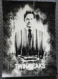 Фотографии 90-х гг. Твин Пикс. Twin Peaks. Репринт, фото №6
