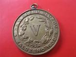 Чехословацька  службова  медаль  пожарних  дружин  для  Підкарпатських  Русинів  .  Копія фото 2