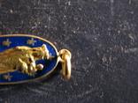 Кулон.Золото 750.Эмаль., фото №6
