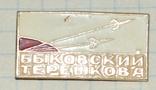 Быковский Терешкова . полет в космос, фото №2