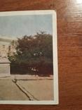Одеса, палац піонерів. 1956, фото №3