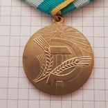 """Медаль """"За преобразование нечерноземья"""" копия, фото №4"""