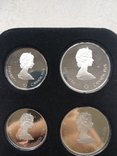 Серебряные доллары Канады, фото №6