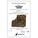 Залізо-кам'яний метеорит Brahin, 22,5 грами, сертифікат автентичності, фото №3
