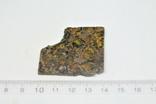 Залізо-кам'яний метеорит Brahin, 22,5 грами, сертифікат автентичності, фото №4
