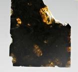 Залізо-кам'яний метеорит Brahin, 22,5 грами, сертифікат автентичності, фото №7