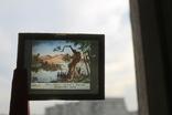 """Серия диапозитивов """"Приключение доисторического мальчика"""" стекло 1948 год, фото №7"""
