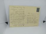 Открытка ГДР. Полевые цветы. Васильки, ромашки, розы, фото №3
