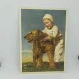 Открытка Мальчик с собакой. чистая, фото №2