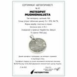 Підвіска із залізним метеоритом Muonionalusta, із сертифікатом автентичності, фото №3