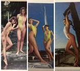 3 календарика  девушки, эротика, 1991 г.  / дівчата, еротика, фото №2