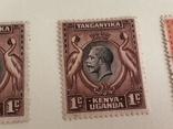 Британская колония. Кения, фото №4
