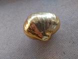 Золотая Луковица, фото №7