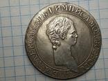 Рубль государственная монета портрет копия, фото №2