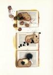 Открытки еда книги хлеб улитки икра чеснок, фото №2