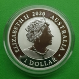 Австралия Доллар Лебедь Swan Фауна 2020 Серебро, фото №3