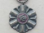 Медаль PRL За долголетнюю супружескую жизнь. Польша., фото №3