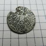 Полугрош.1549 г., фото №9