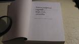 Джеймс Феличи. Типографика: шрифт, верстка, дизайн., фото №3