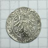 Полугрош 1564 года., фото №5
