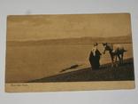 Открытка 1900-1920 годы. № 151, фото №2