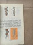 Азбука макраме К.В. Філоненко, фото №13