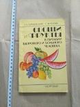 Овощи и фрукты в питании здорового и больного человека, фото №2
