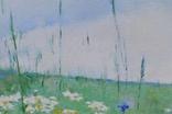 """Картина """"Поле ромашек"""" 2017 год. Художник  Голояд Богдан., фото №6"""