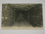 Открытка 1900-1920 годы. № 194 Париж кости, фото №2