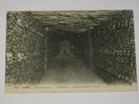 Открытка 1900-1920 годы. № 194 Париж кости, фото №3