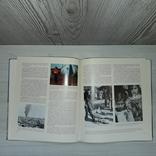 Кипр Альбом фотографий Никосия 2013 Природа, история, жизнь на Кипре..., фото №13