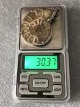Серебряный кулон с пиритизированным аммонитом (серебро 925 пр, вес 30 гр), фото №3