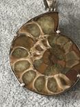 Серебряный кулон с пиритизированным аммонитом (серебро 925 пр, вес 30 гр), фото №6
