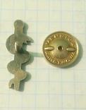 Польский франчный значок медика., фото №5