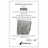 Залізо-кам'яний метеорит Seymchan, 30,0 грам, із сертифікатом автентичності, фото №3