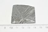 Залізо-кам'яний метеорит Seymchan, 30,0 грам, із сертифікатом автентичності, фото №4