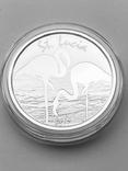 2 доллара. 2019. Фламинго. Санта Люсия (серебро 999, 1 oz), фото №2