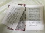 Старая немецкая книга 1884г., фото №4