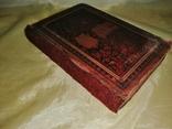 Старая немецкая книга 1884г., фото №7