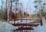 В весеннем лесу, х., м., 50х70 см. Алек Гросс, фото №2
