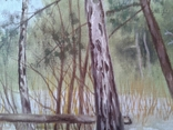 В весеннем лесу, х., м., 50х70 см. Алек Гросс, фото №9
