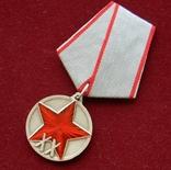 20 лет РККА, копия, фото №5